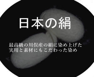 P1010088_z